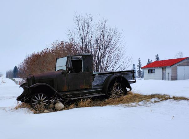 hedy bach photography ~ bentley alberta ~6