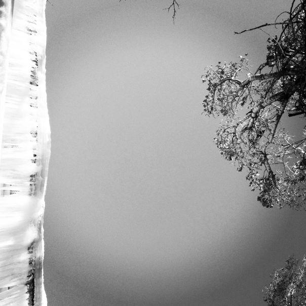 instragram hedy bach ~ frozen water ~ 2