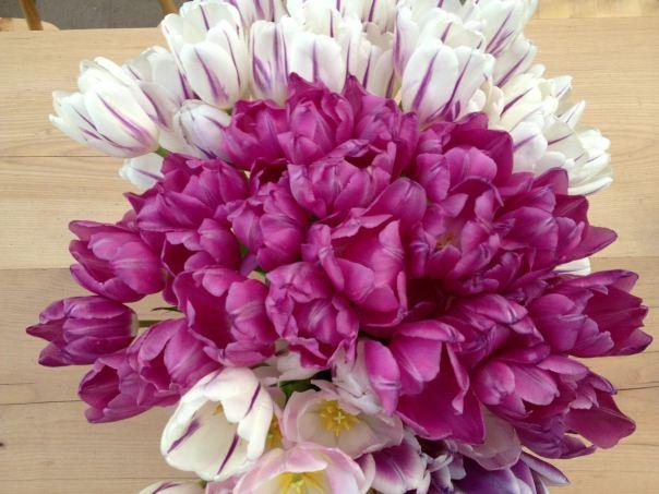 instragram hedy bach ~ spring flowers ~ 5