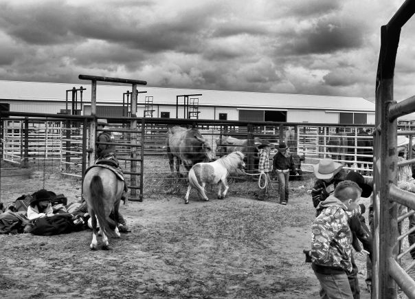 hedy bach photography ~ cowboys ~ 8