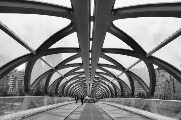 hedy bach photography ~ FUJI x100 ~ SLOPPYBUDDHIST ~ peace bridge ~ 4