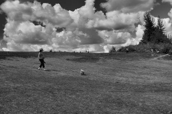 hedy bach photography ~ Sloppy Buddhist ~ fijix100 ~ Tpark ~  2