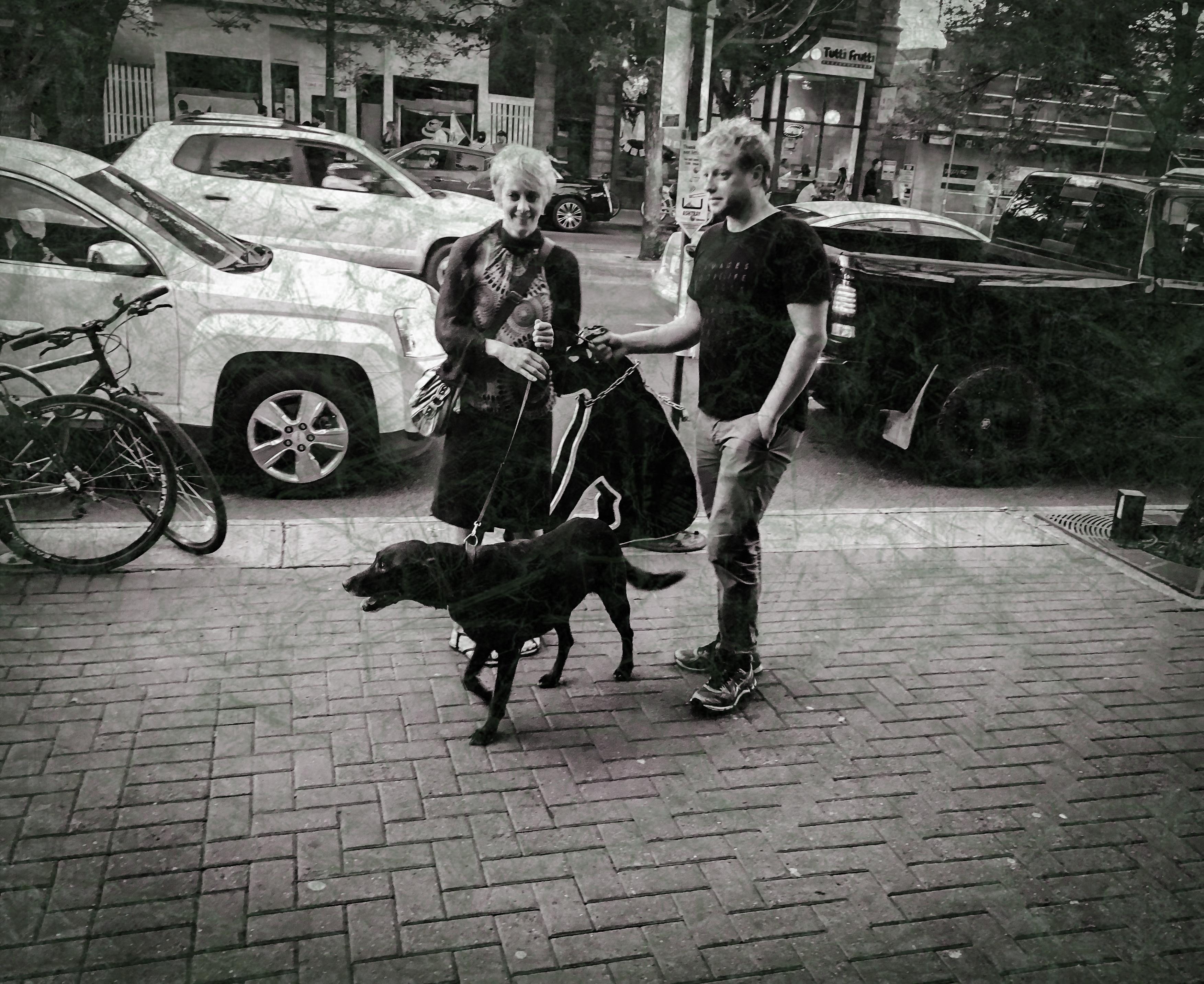Black dog ~ worn ~ 1