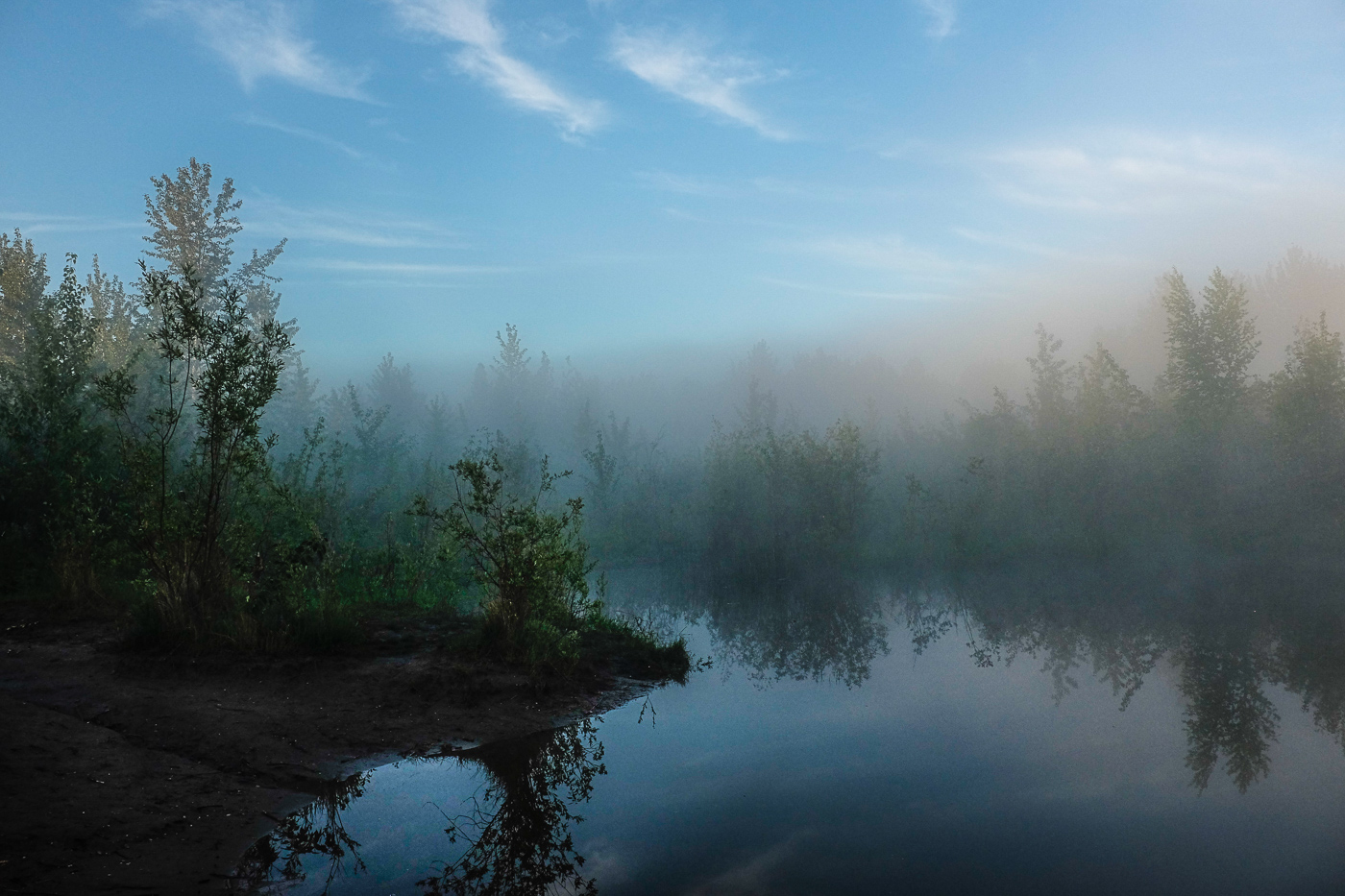 Hedy Bach Photography - blue fog morning - 12