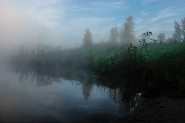 Hedy Bach Photography - blue fog morning - 13