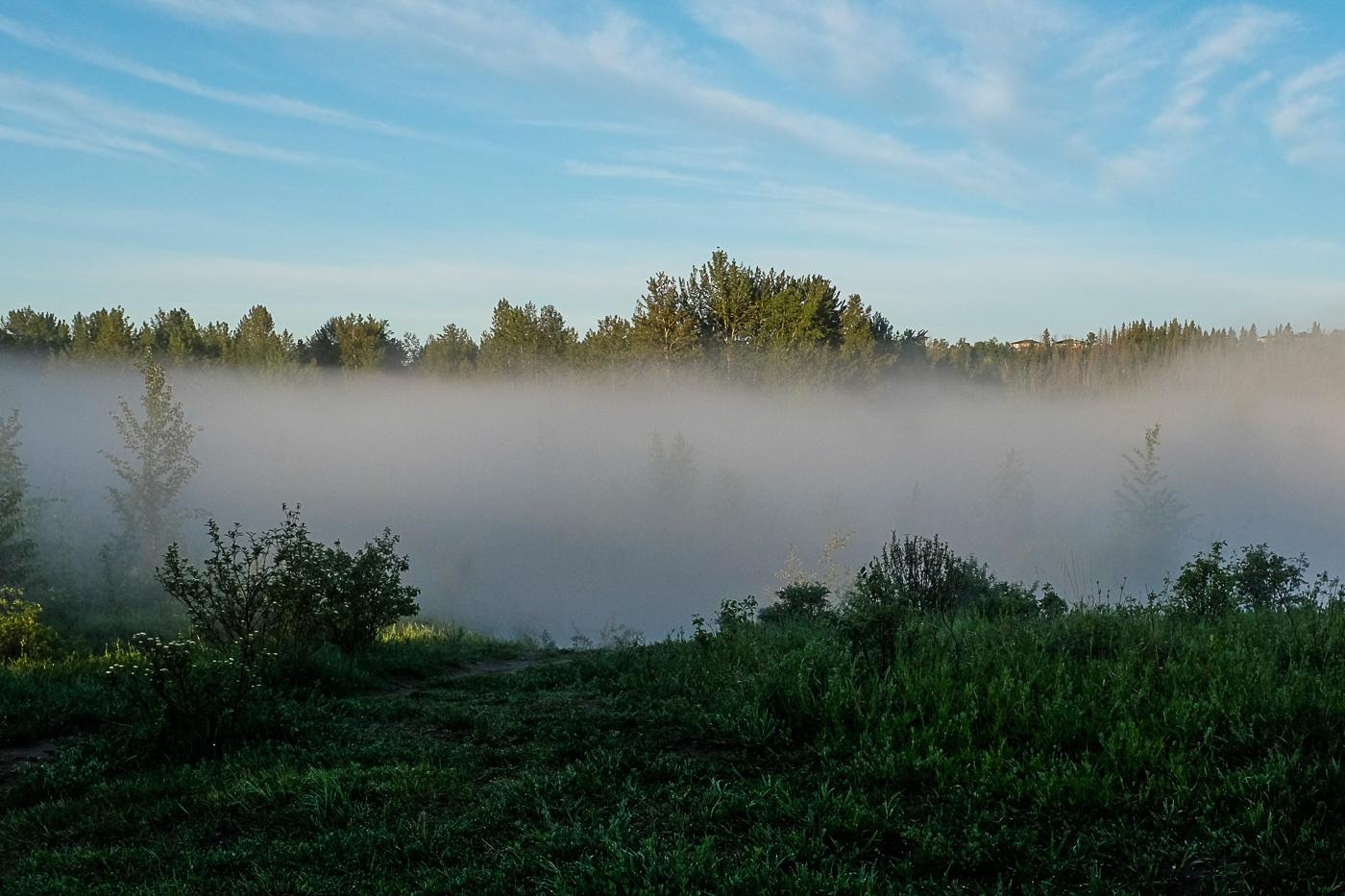 Hedy Bach Photography - blue sun fog - 7