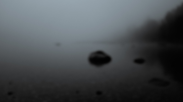 Hedy Bach Photgraphy - etown - foggy moring b-w 2