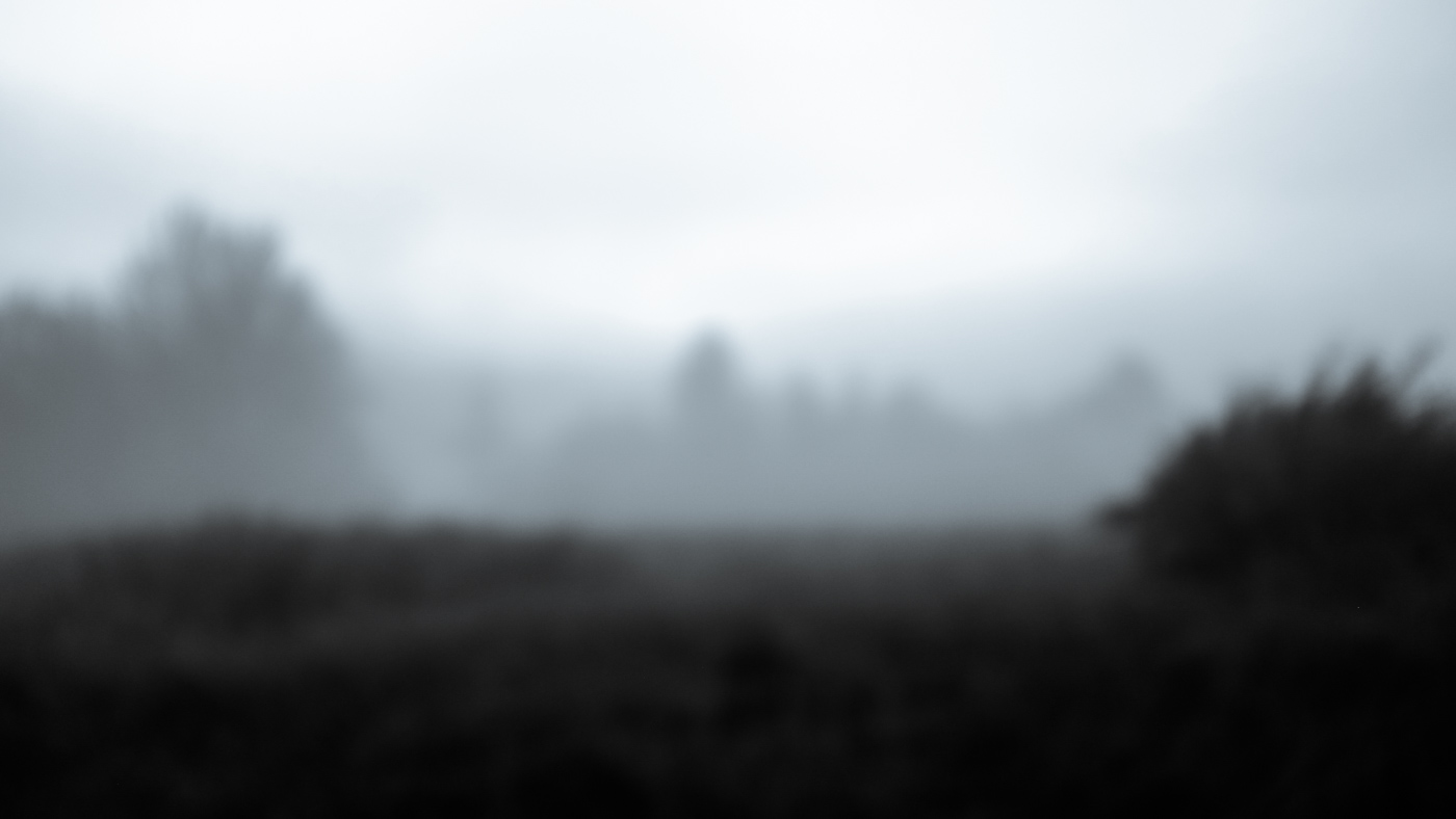 Hedy Bach Photgraphy - etown - foggy moring b-w_