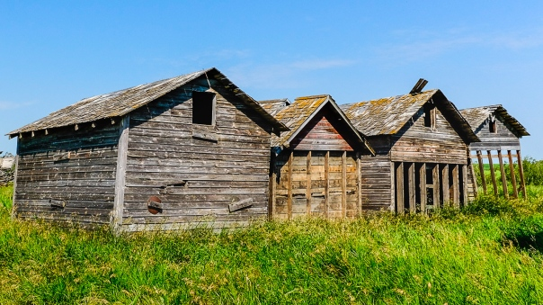 Hedy Bach Photography - SASK - four sheds_