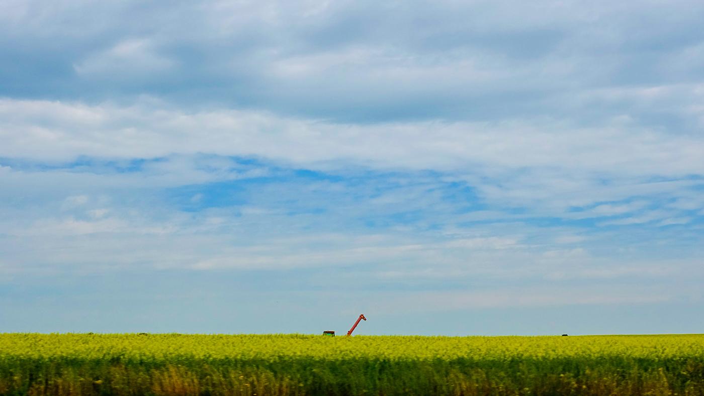 Hedy Bach Photography - SASK - road and machine giraffe_