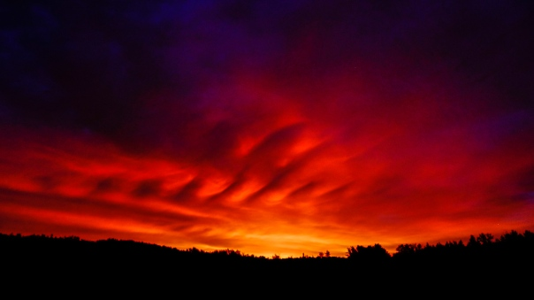 Hedy Bach Photography - TPark fire red sunrise - 3