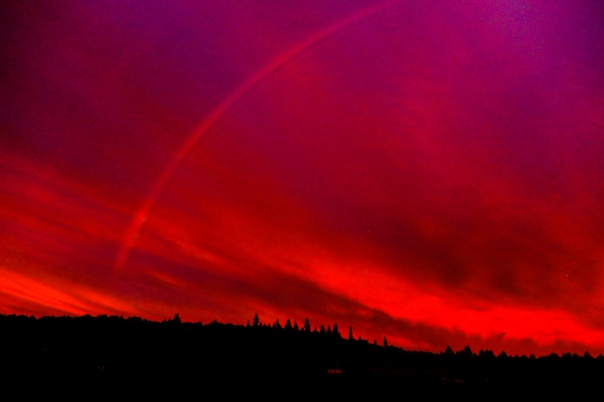 Hedy Bach Photography - TPark fire red sunrise - 5