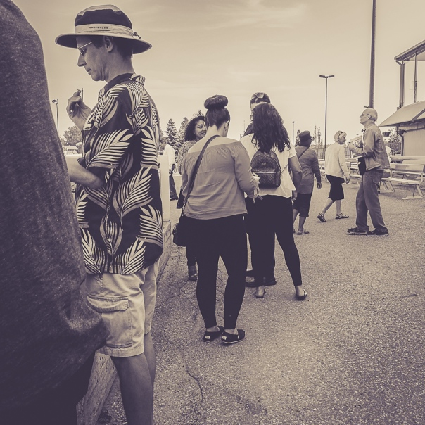 Hedy Bach Photography - horse races - 3