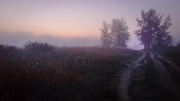 Hedy Bach Photography - moon walk - 10