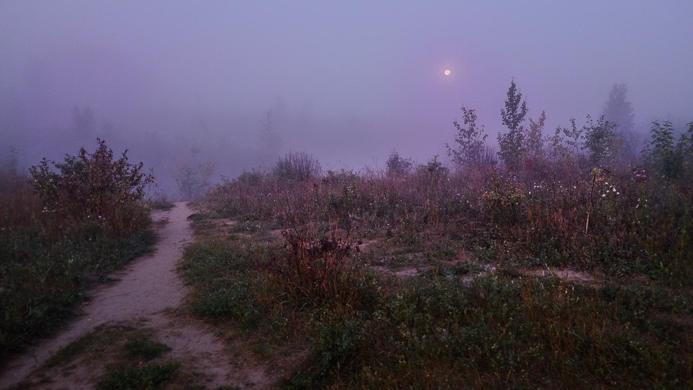 Hedy Bach Photography - moon walk - 12
