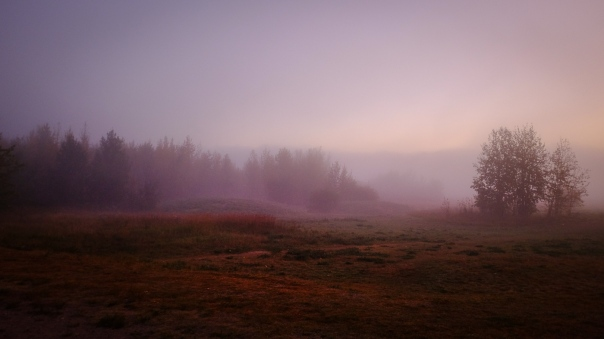 Hedy Bach Photography - moon walk - 18
