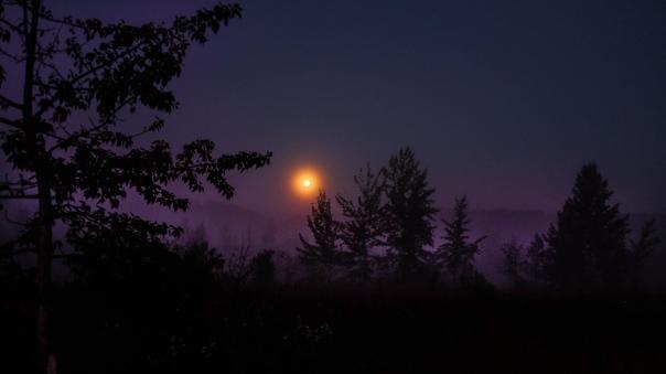 Hedy Bach Photography - moon walk - 5