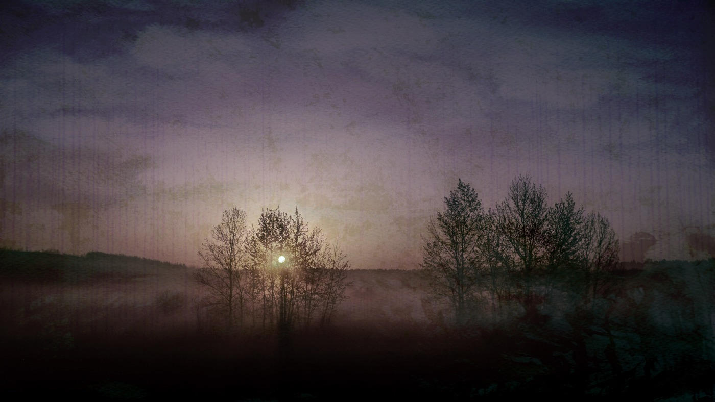 Hedy Bach Photography - fog bleach - 3