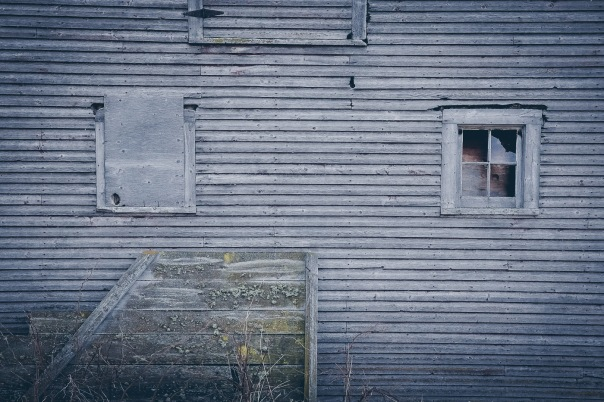 hb images - blue barn wall and window and weed