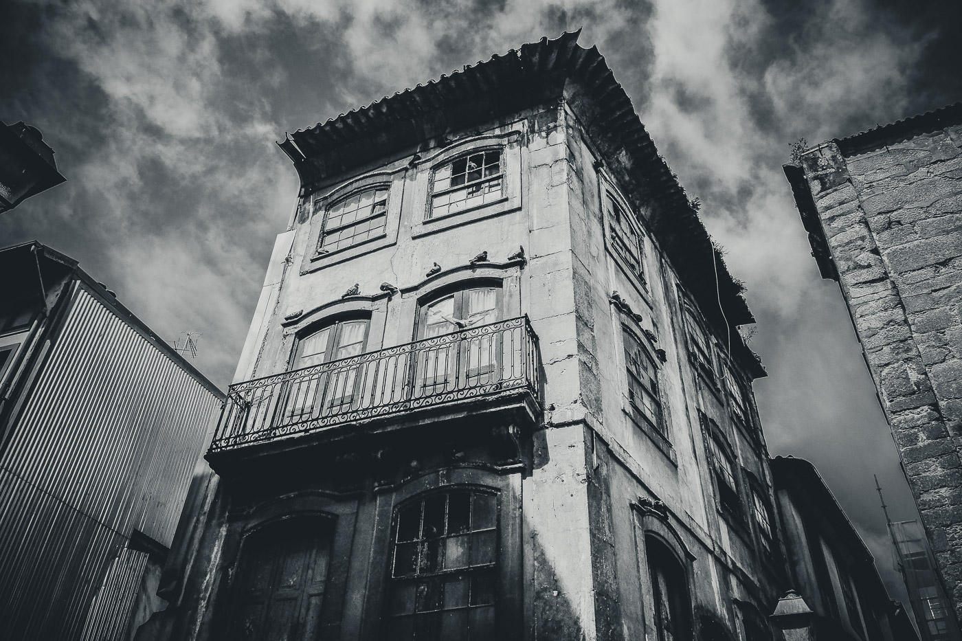 hb images - Porto - b-w street building and bird_