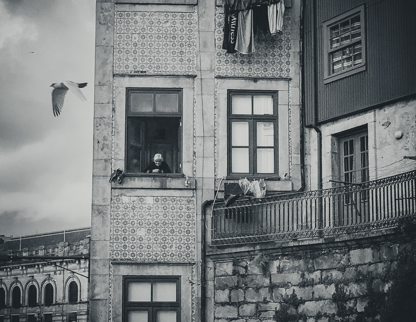 hb images - Porto - b-w street iphone woman and bird_