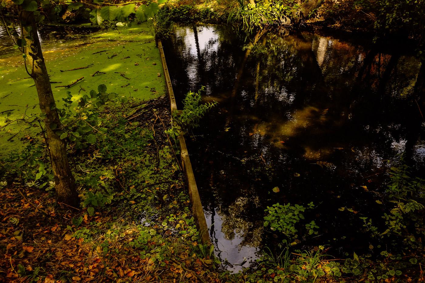 hb images - Inselpark Park - 4