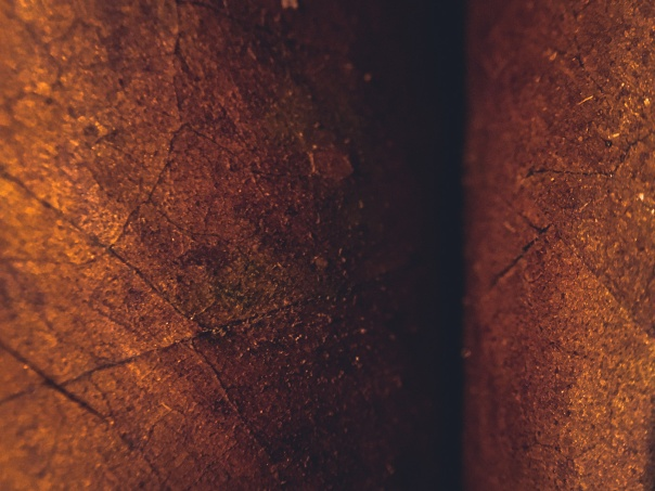 hb images - cigar - 1_