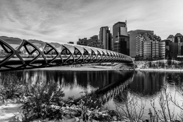 hedy bach images - ct - bridge - 5