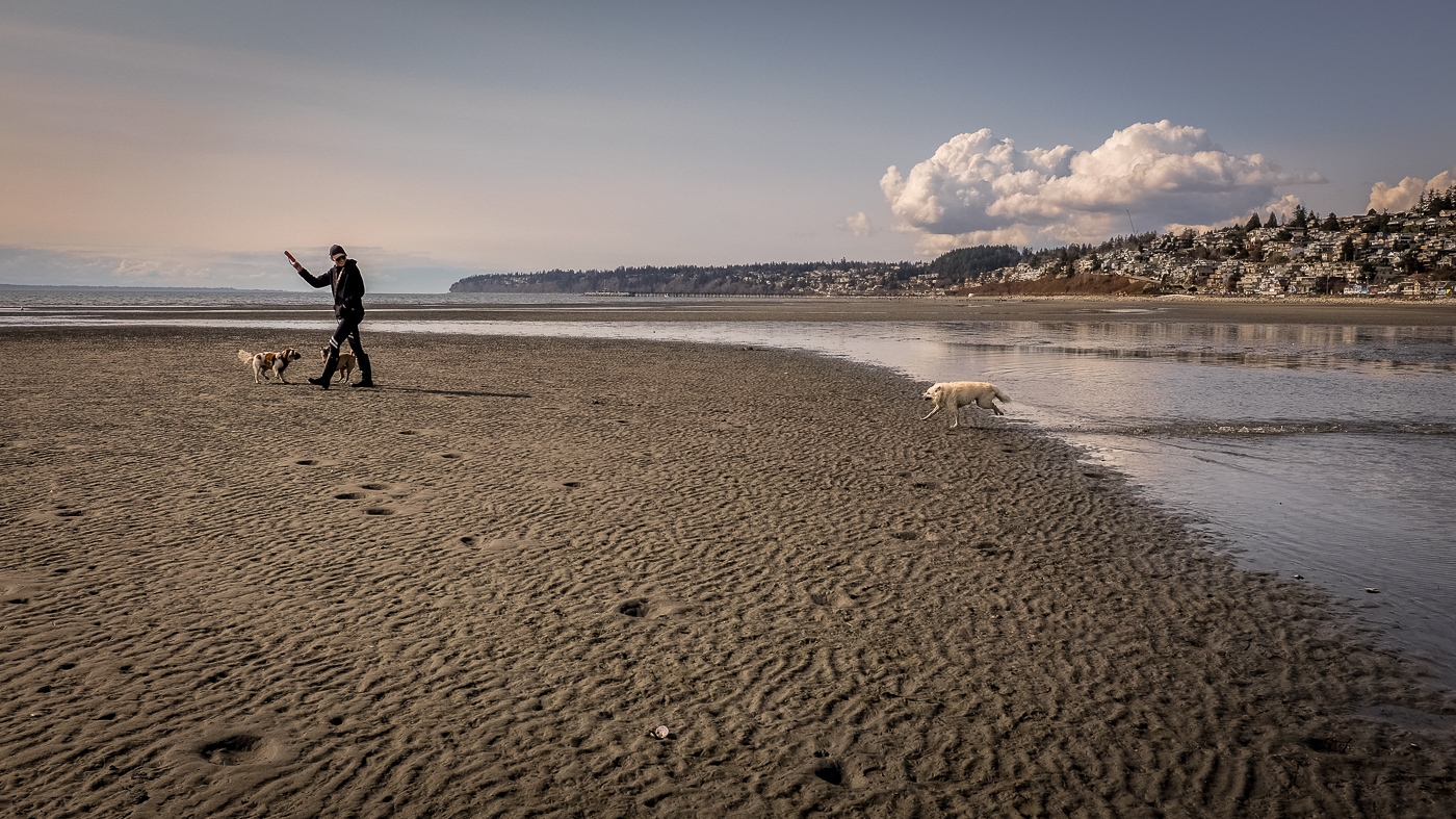 hedy bach images - white rock - 15