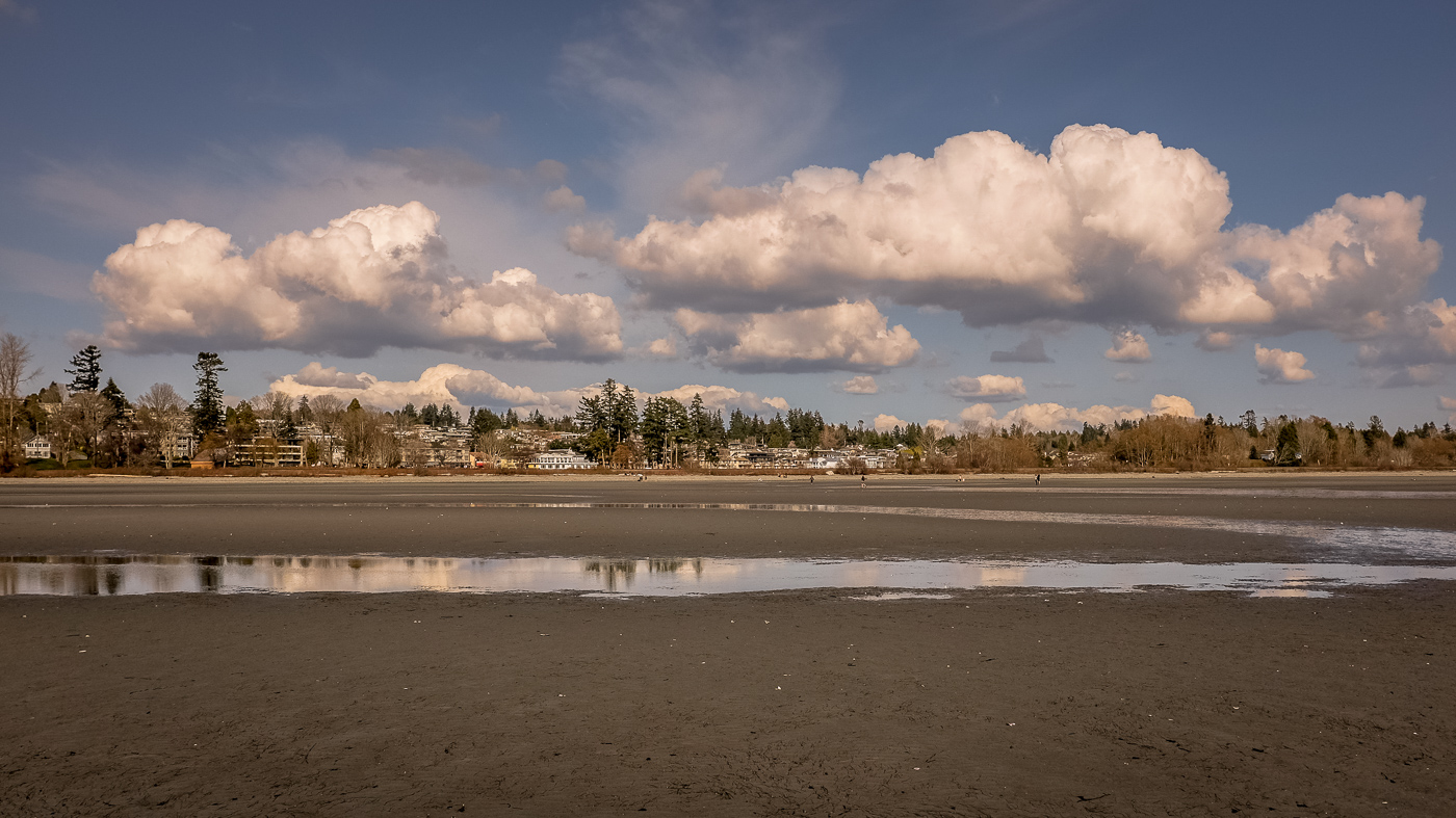 hedy bach images - white rock - 8