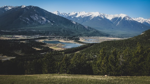 hedy bach images - Banff 5