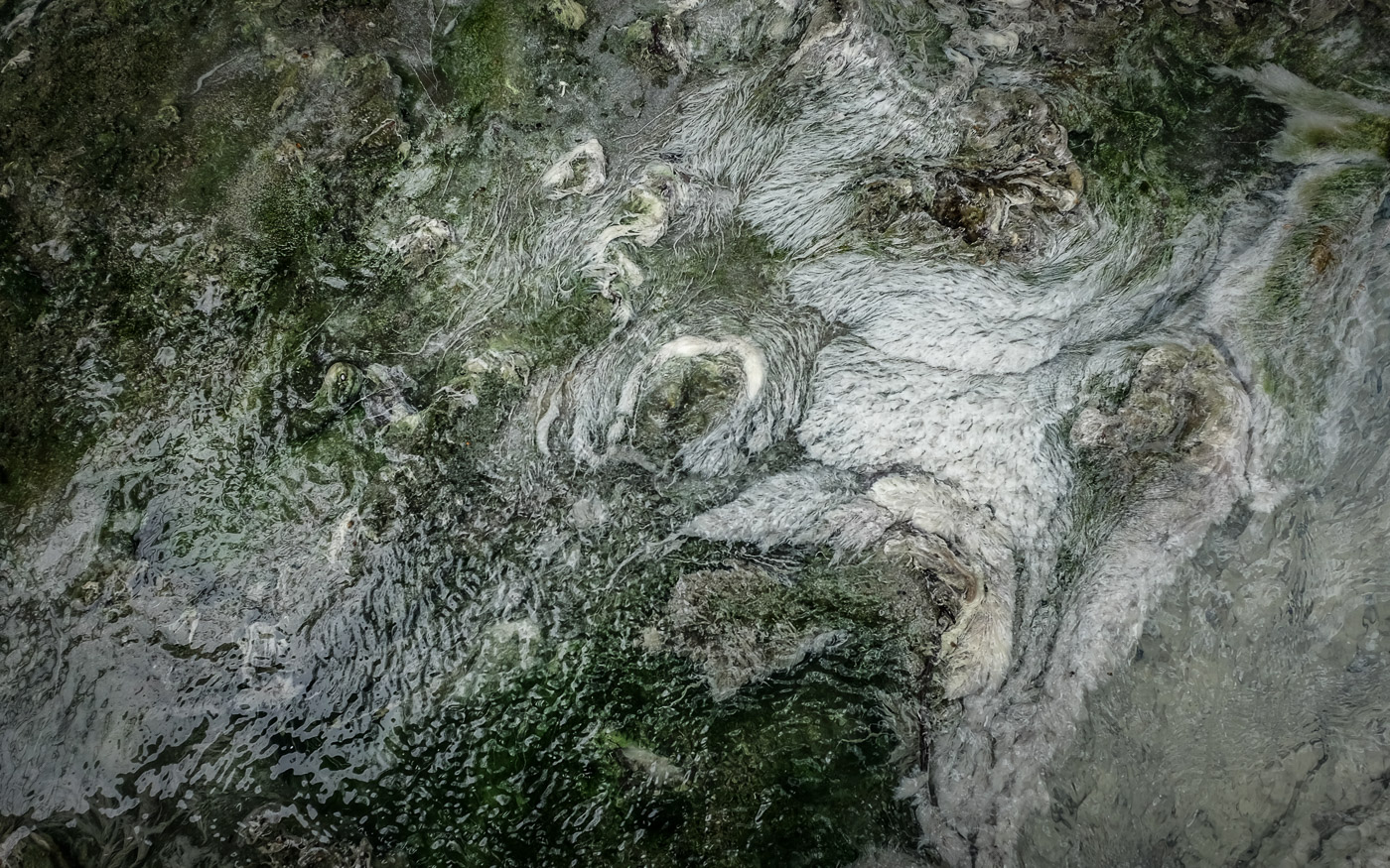 hedy bach images - Cave and Basin 1