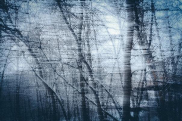 hedy bach images - blue blur - 2