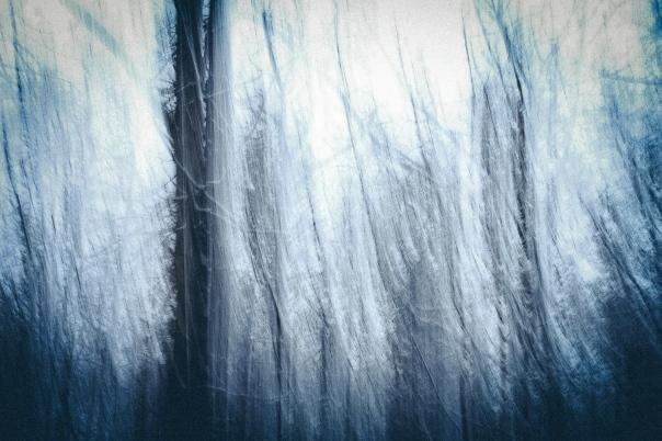 hedy bach images - blue blur -5