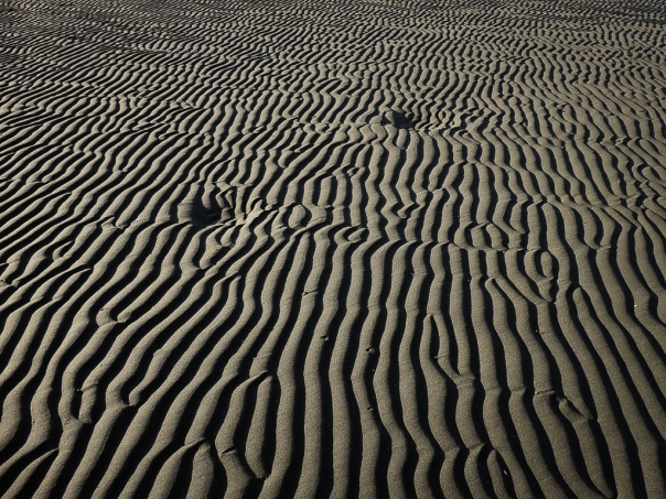 hedy bach images - sand and me -5