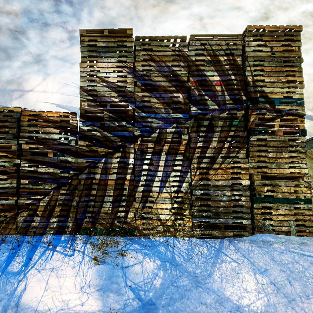 hedy bach images - double pallete - 2c