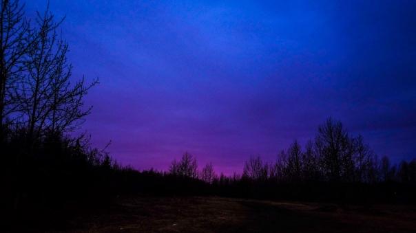 hedy bach - sunrise + juno - 2