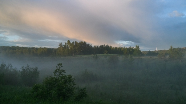 hedy bach - tpark sunrise - 4