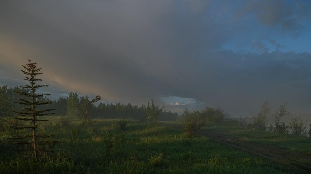 hedy bach - tpark sunrise - 5