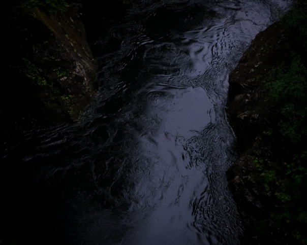 hedy bach - dam - 4