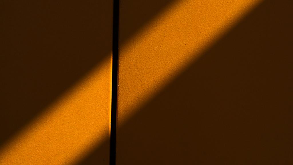 hedy bach images - orange - 2_