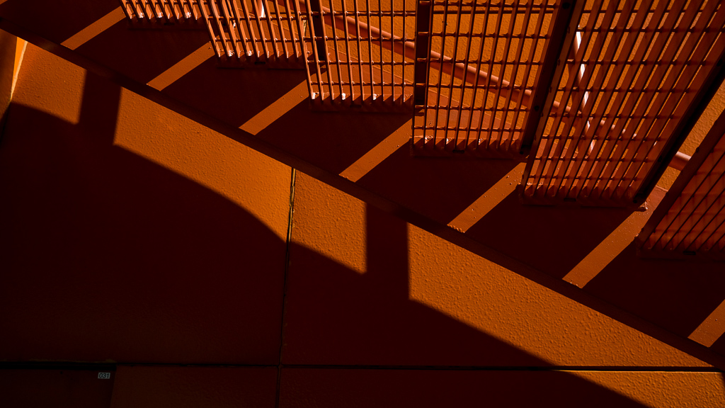 hedy bach images - orange - 4